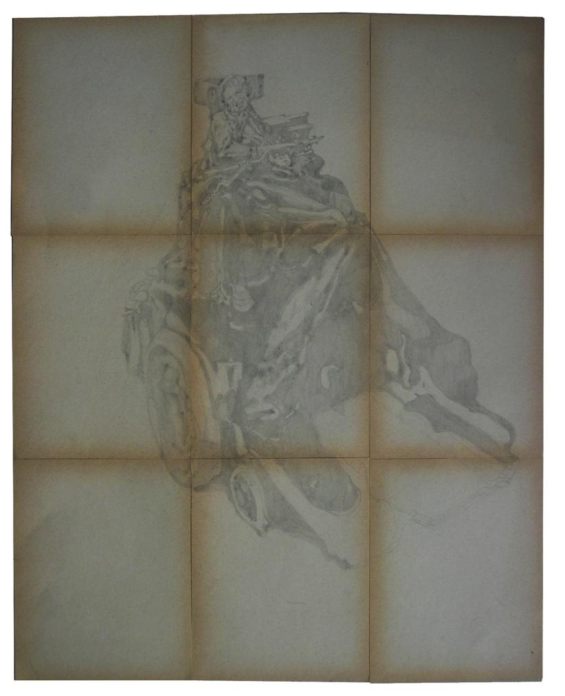 PILE OF BONES (HAWKING) 2006  Pencil on paper. dimensions: 56.5*45.5 cm