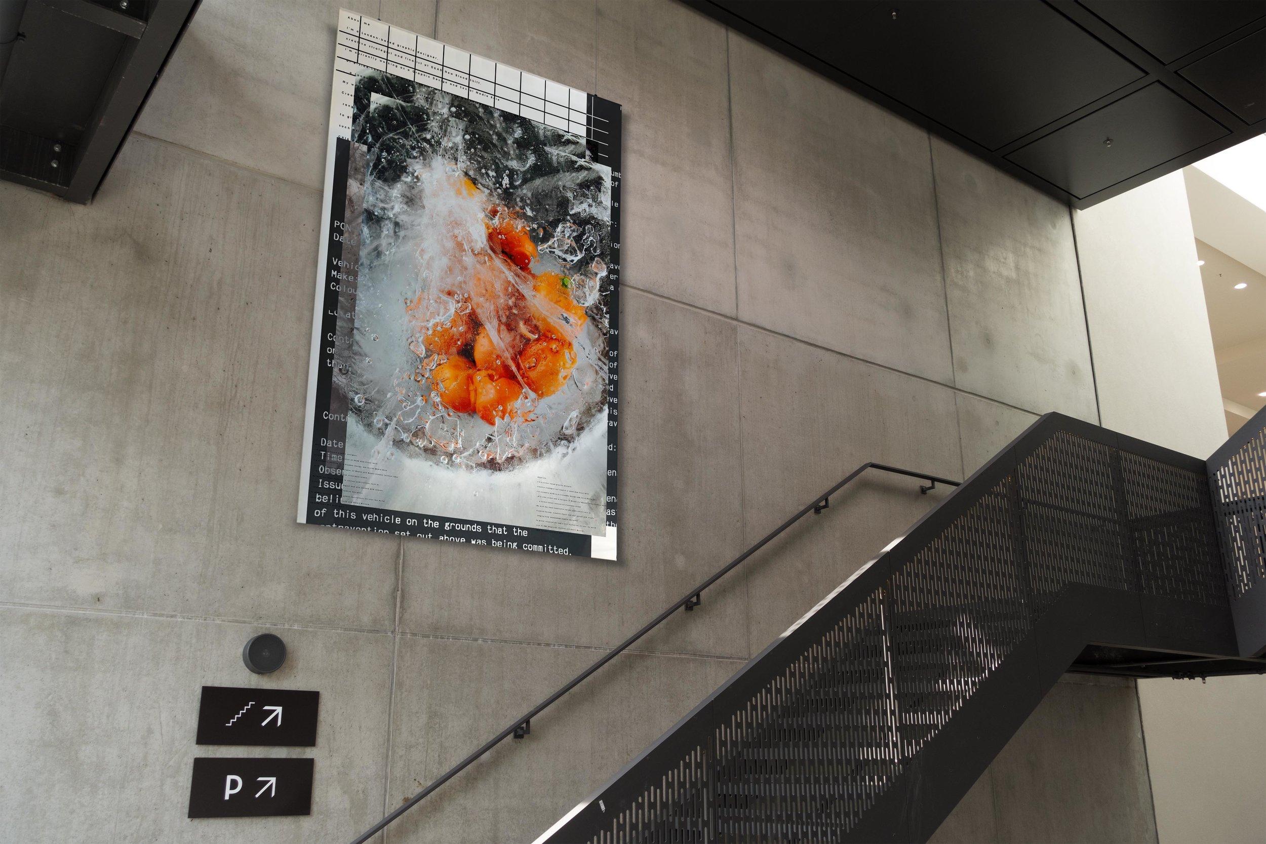 Highsnob Mall Poster .jpg