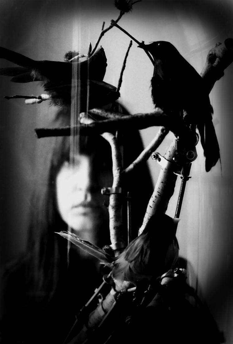 Derya and the Birds