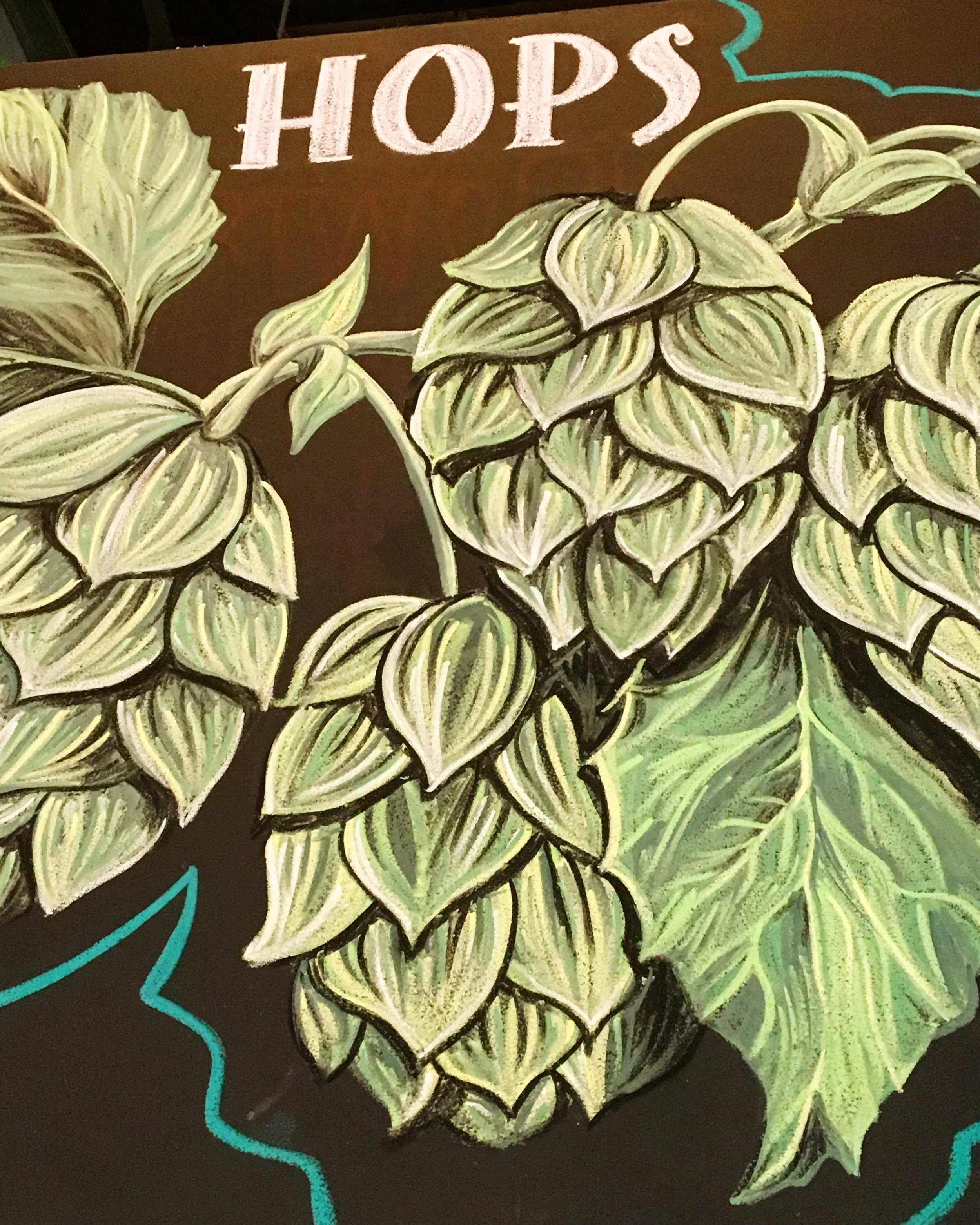 Hops chalk art at Lost Rhino Brewing in Virginia
