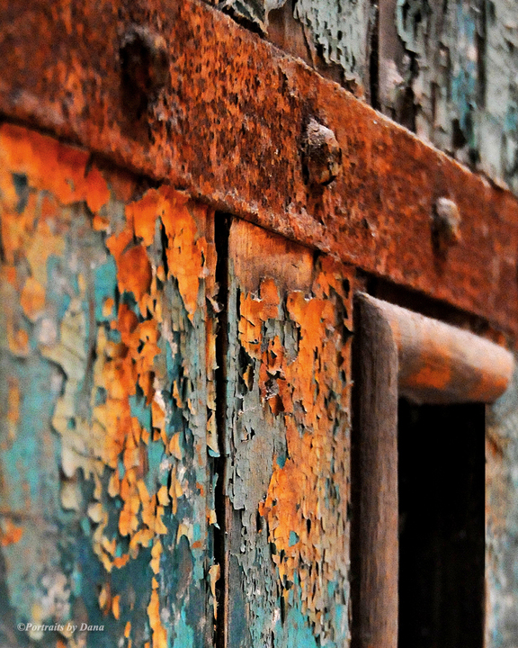 "Dana E. Benner, ""Orange Rust,"" inkjet print on archival paper, 16"" x 20"""