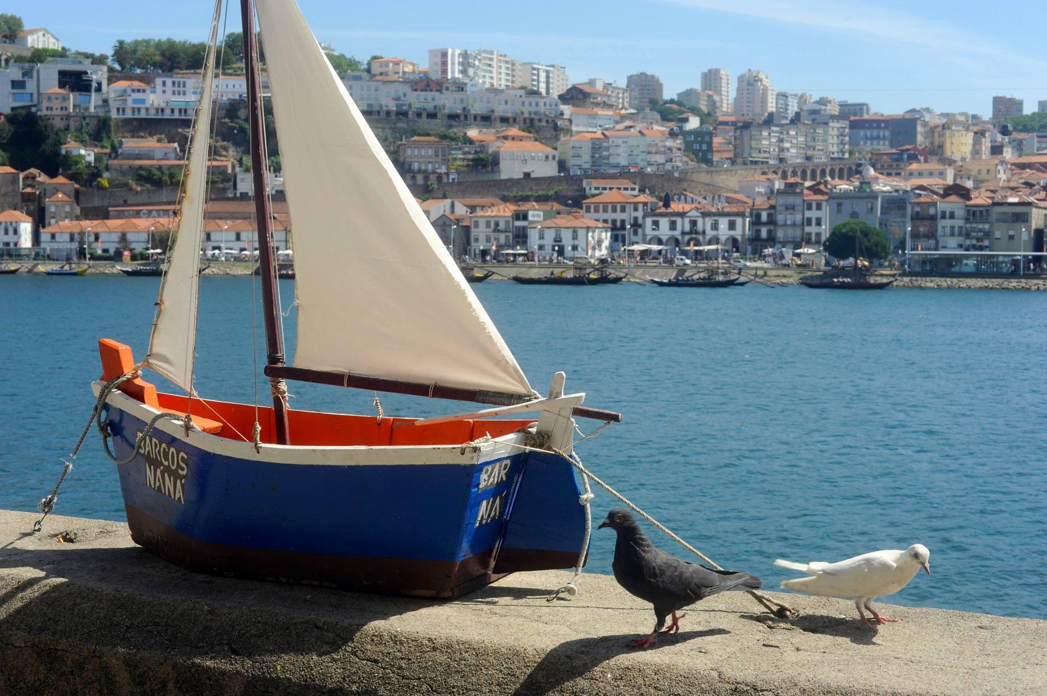 Boat-pigeons-Barcos-Nana.jpg