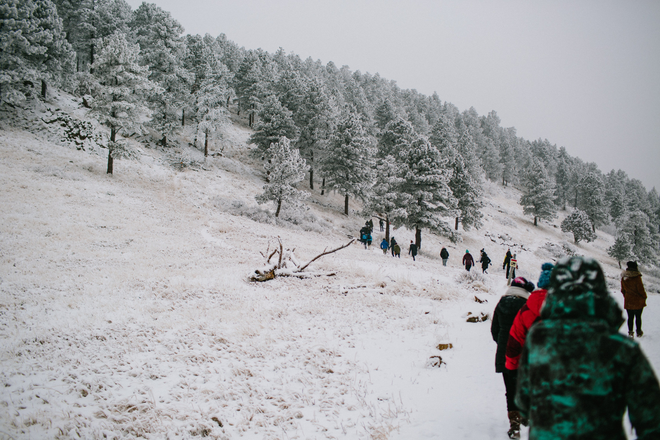 Goals hike in Boulder with Folk Rebellion-goals folk-0082.jpg
