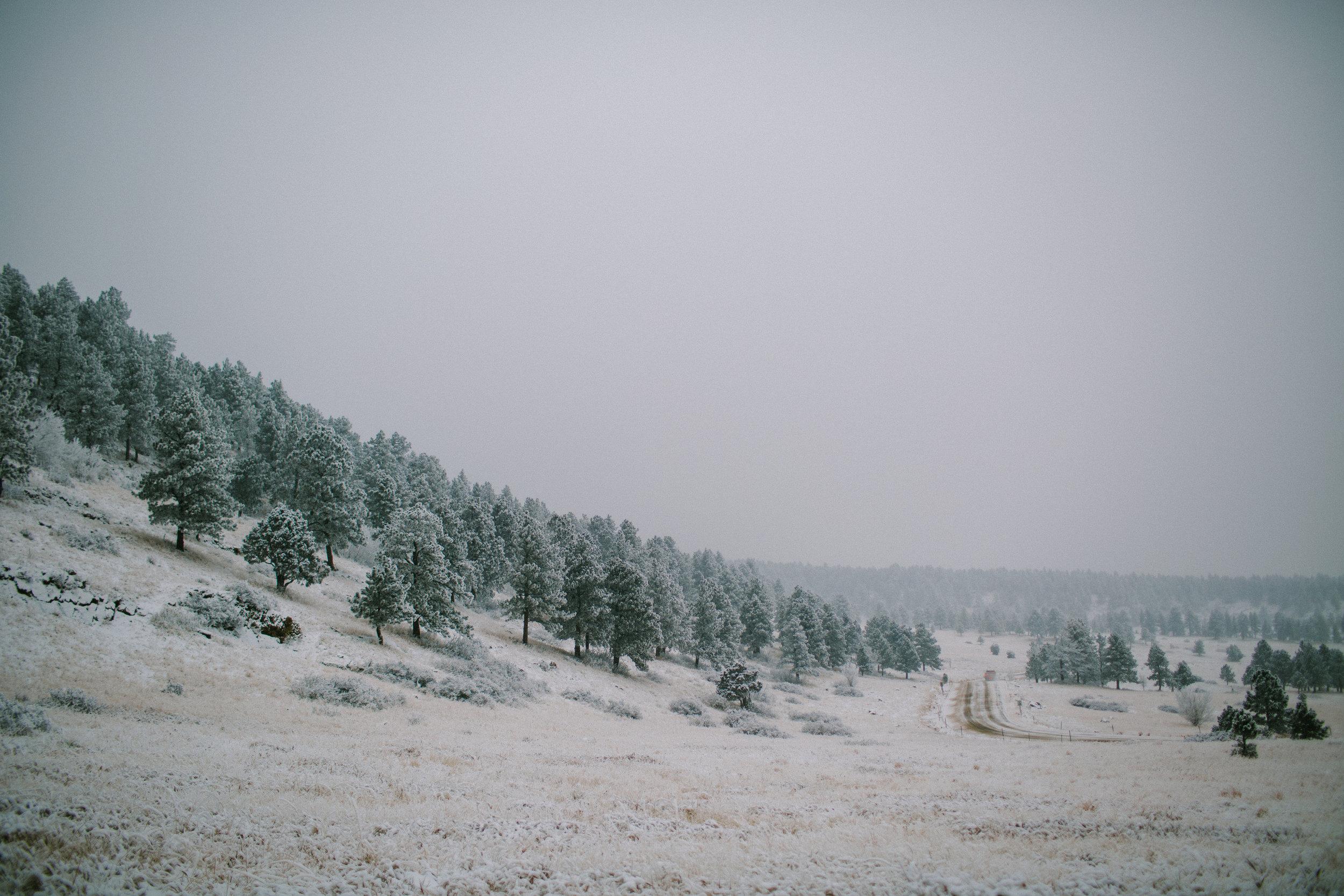 Goals hike in Boulder with Folk Rebellion-goals folk-0083.jpg