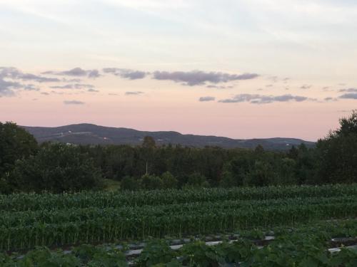 Callenfit Vermont 4JPG