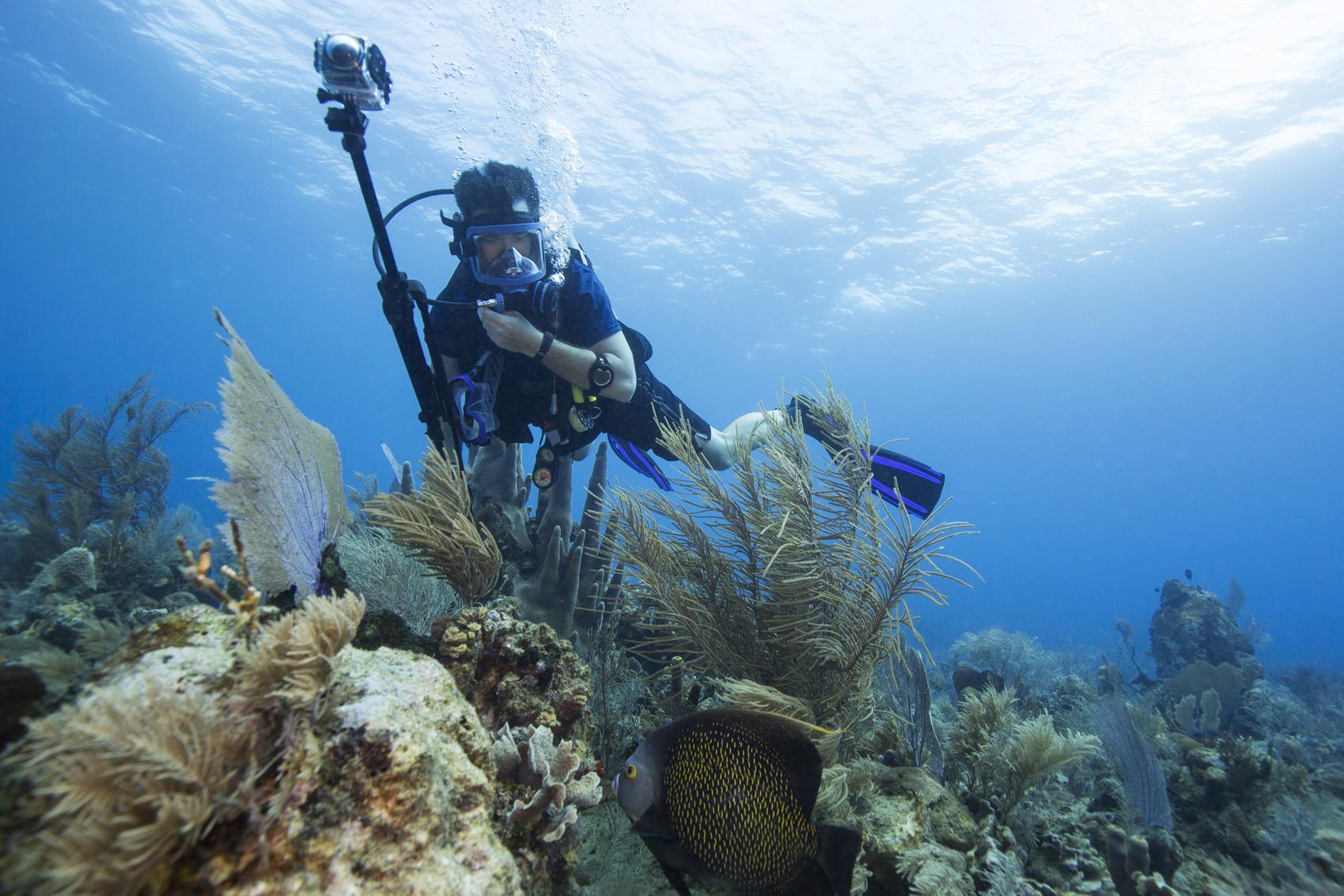 Justin Grubb uses Kodak PixPro's 360 camera to film french angelfish off the coast of Utila.