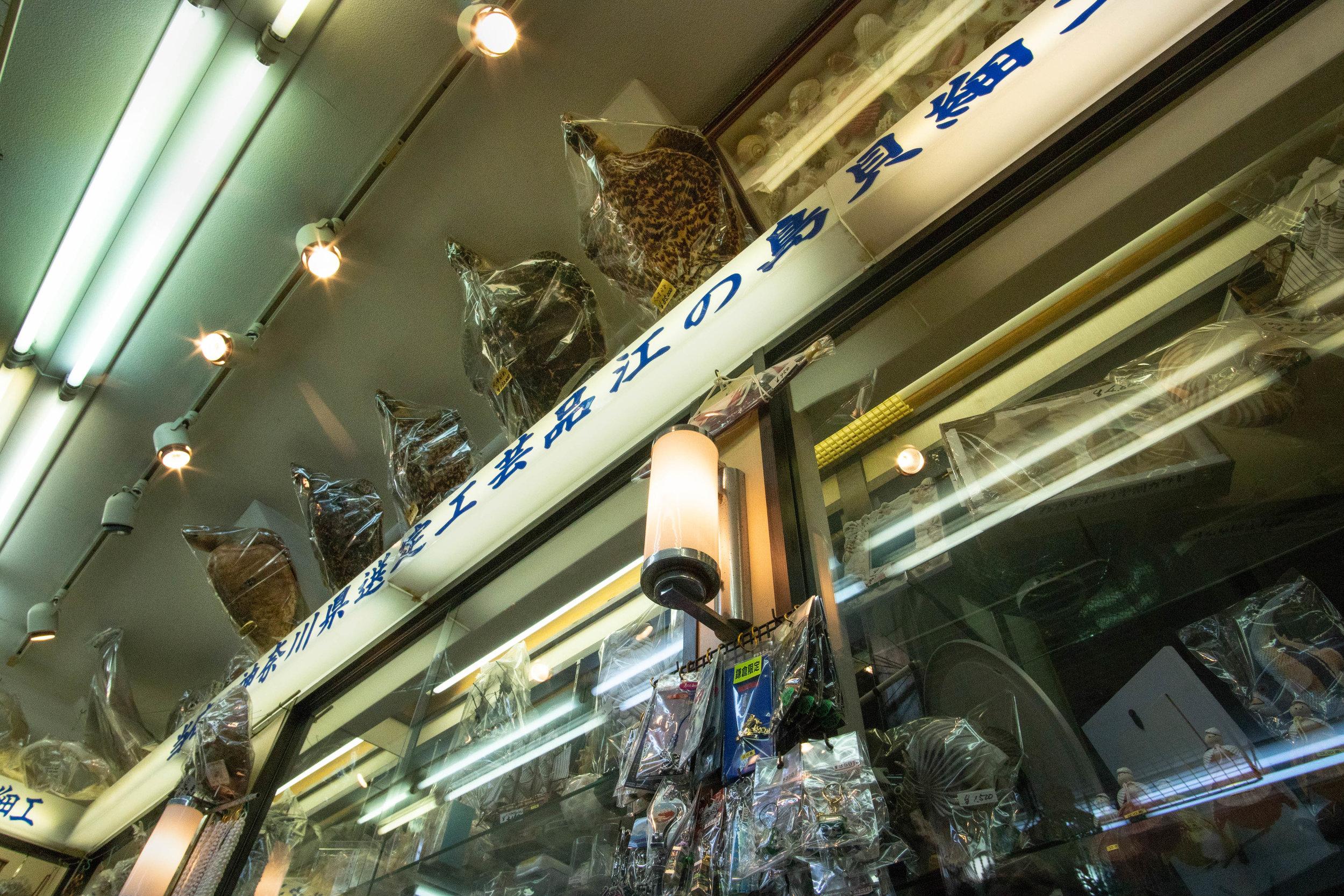 wildlife trade-2.jpg