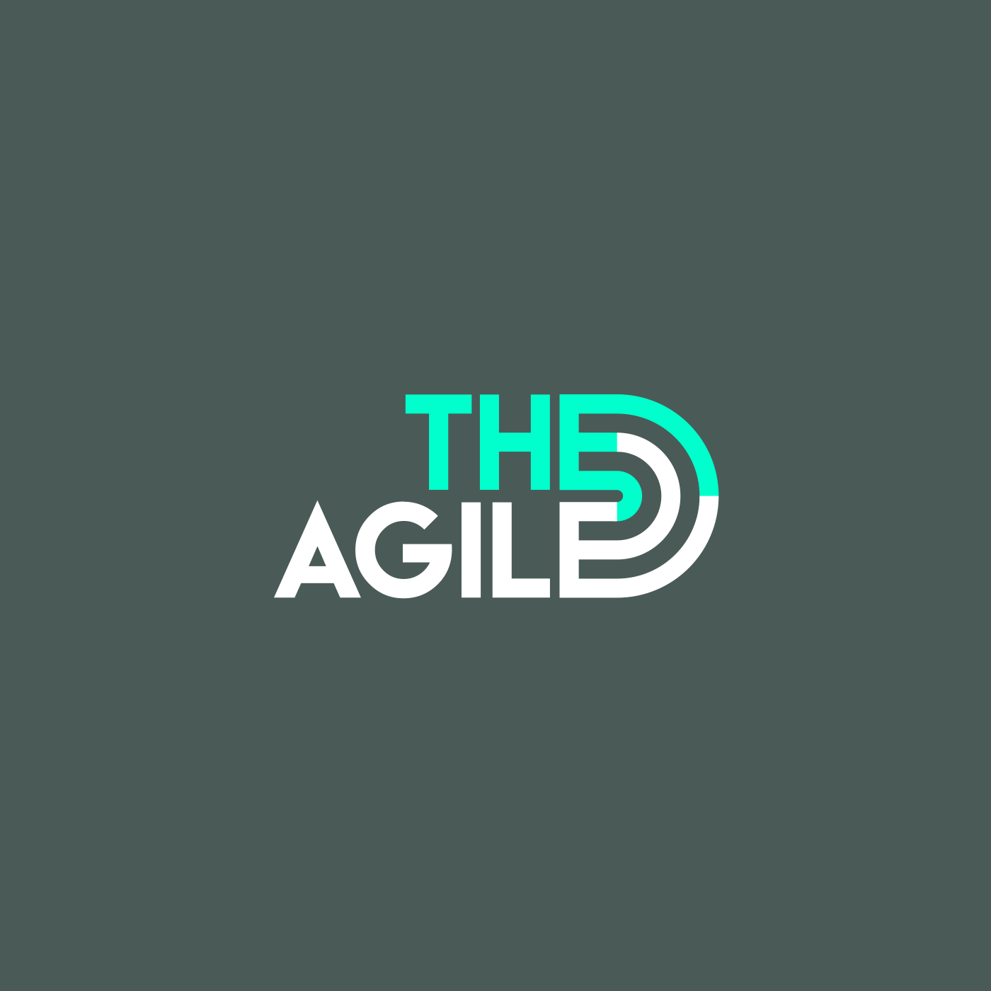 logo_the_agile_andre_levy_zhion.png