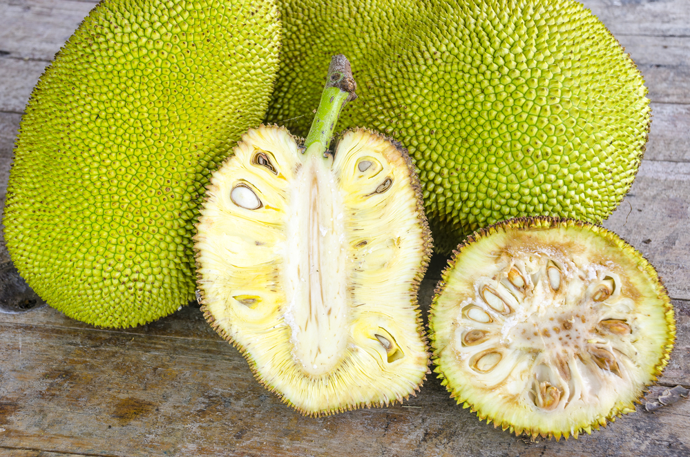 Jackfruit is trending as a meat substitute in natural food products. (Image via DepositPhotos)
