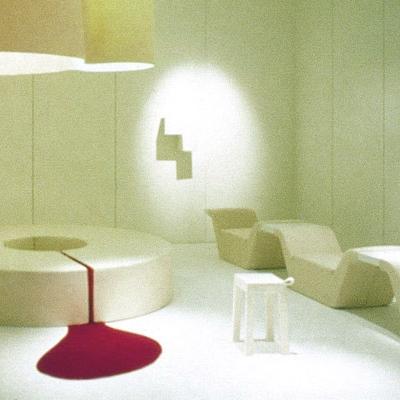 Installation - Perfect Skin -  Paris 2002