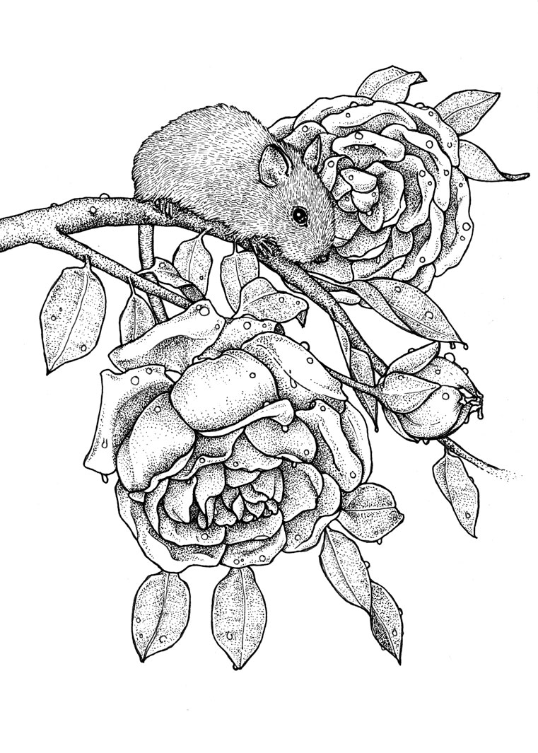 Mouse + Roses