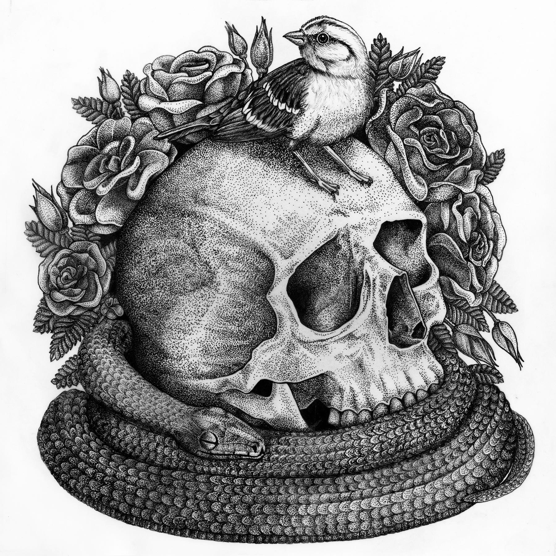 Sparrow, Skull, Snake
