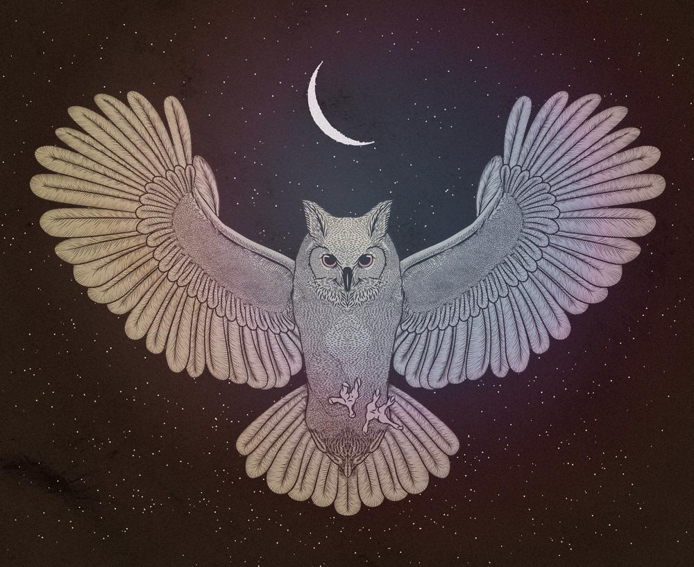 cosmic-owl-update-for-web.jpg