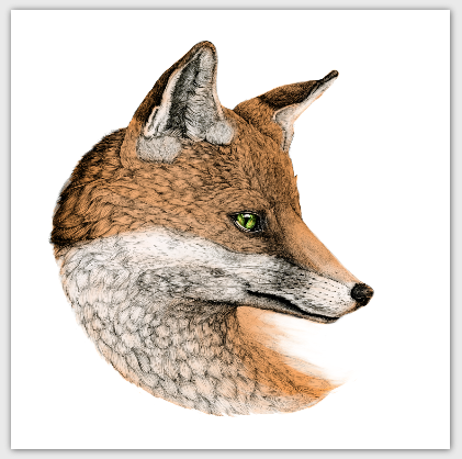 square-postcard-fox.png