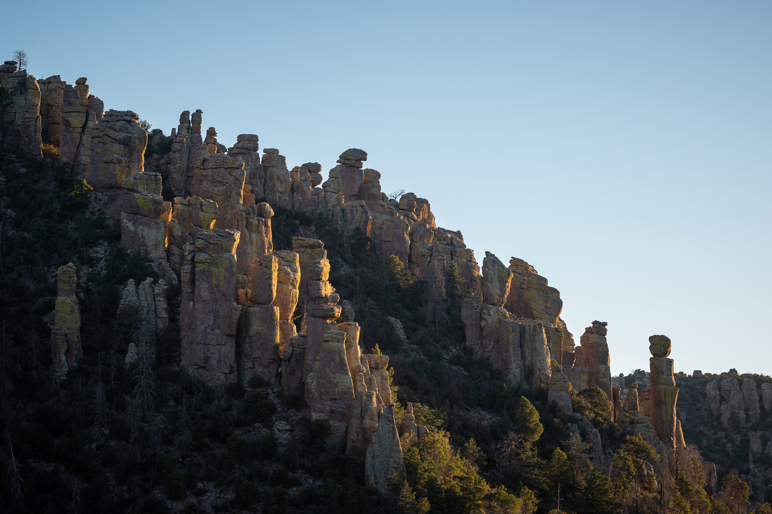 Chiricahua - Arizona