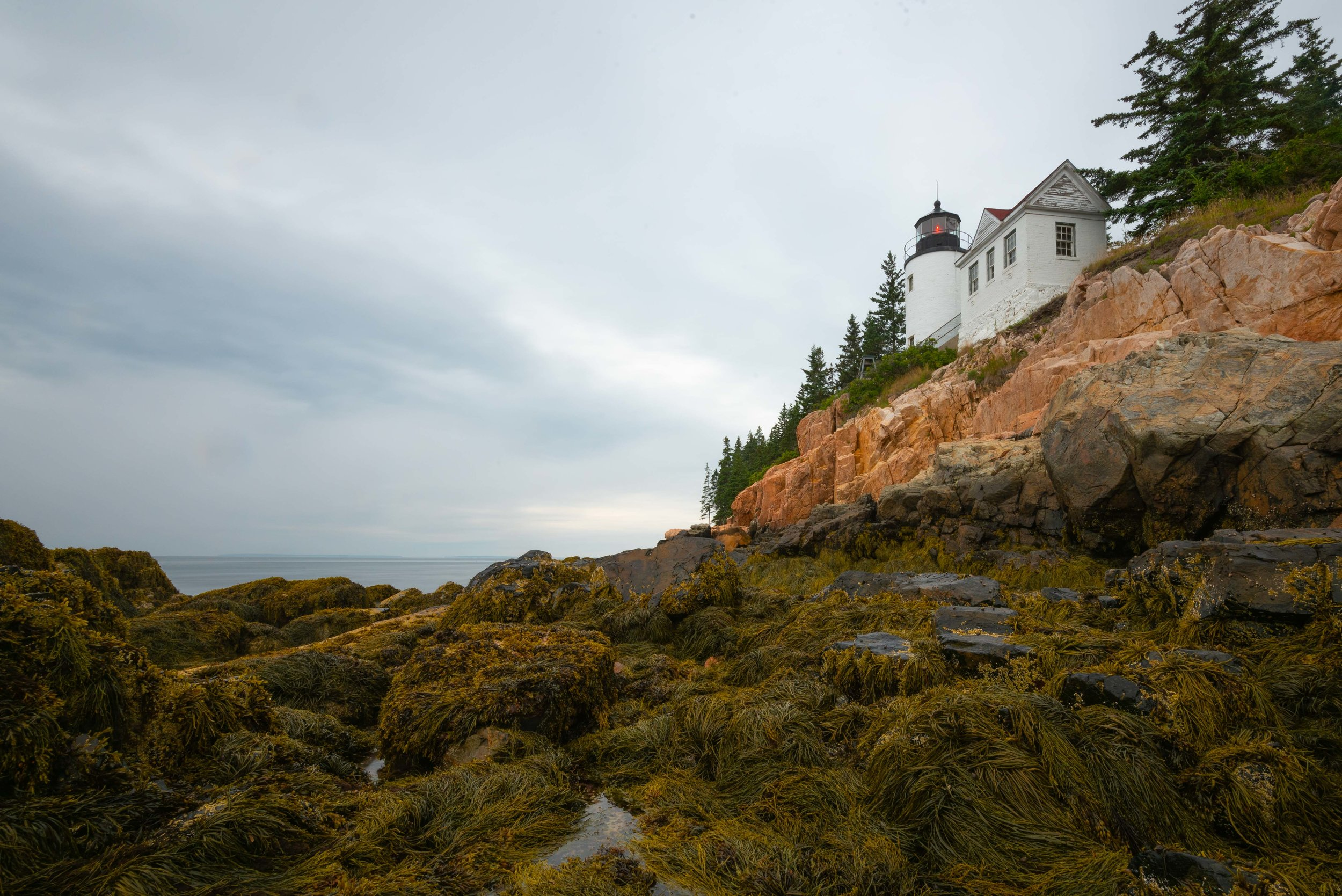 Acadia - Maine