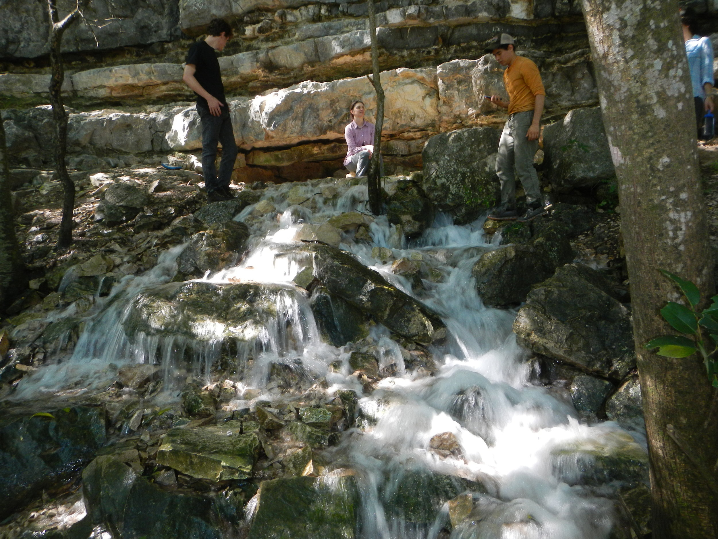 Domino Spring, Barton Creek