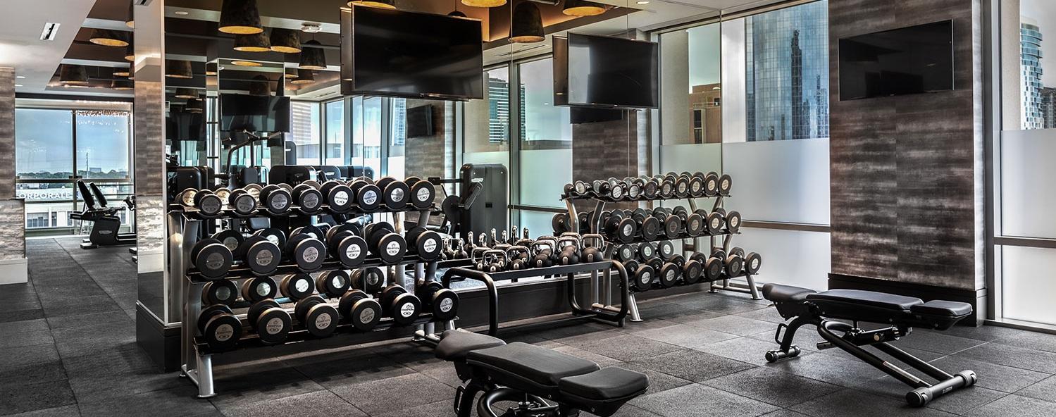 fitness-4-1500x77.jpg