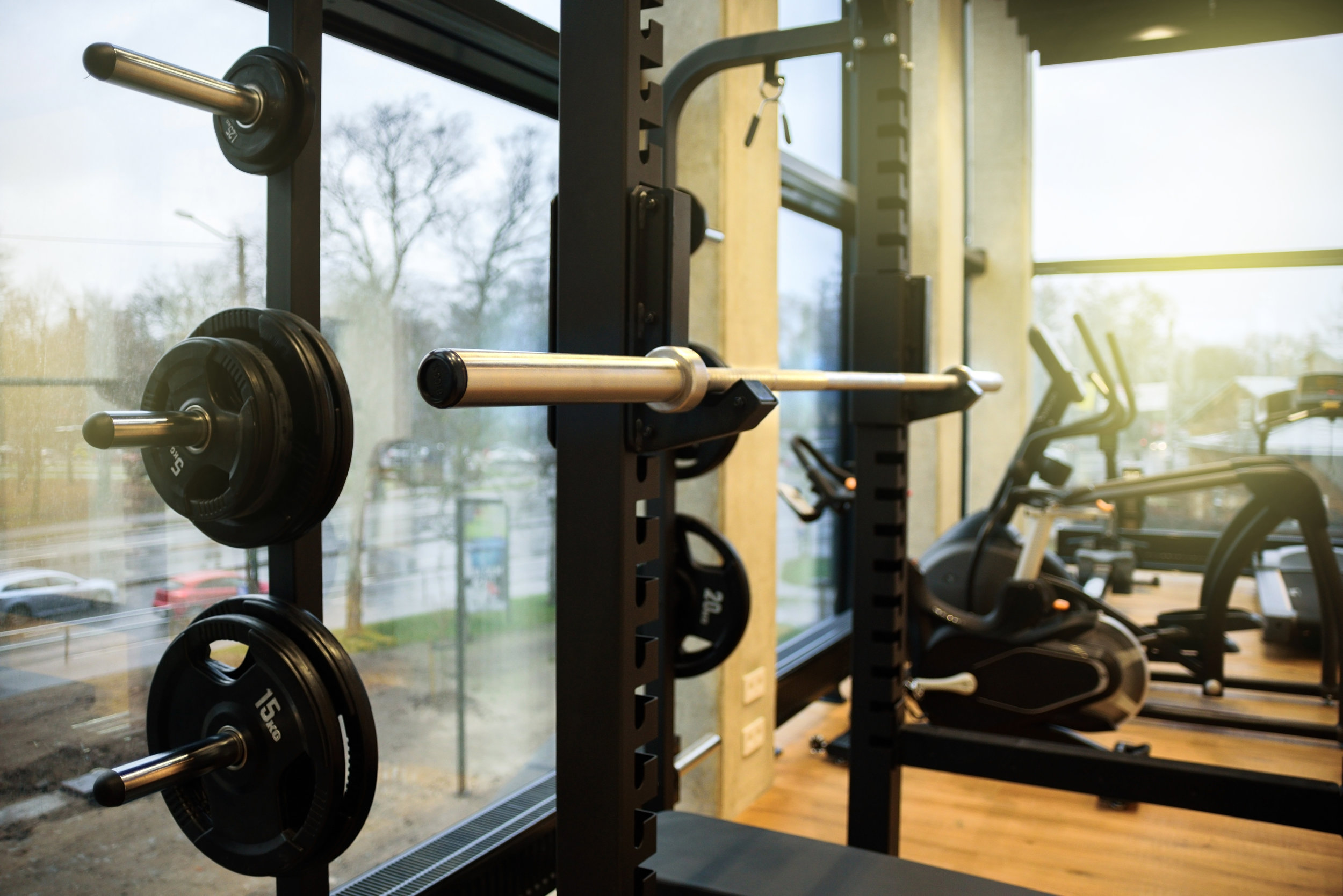 Canva - New Gym Interior with Equipments.jpg