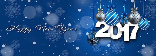 Thank you everyone for reading and following the blog. I'm really looking forward to continuing with it in 2017 and hope you will continue to be the most important part of it.    I wish you all a very safe, happy, and healthy new year.    Sincerely,    Susannah
