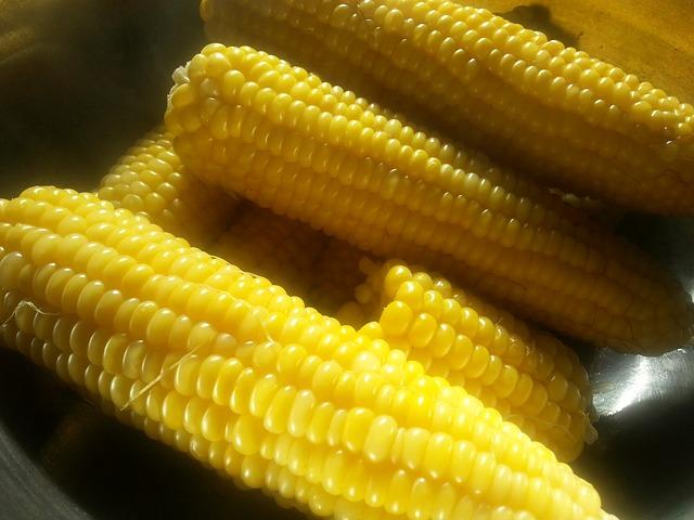 corn-on-the-cob-727108_640.jpg
