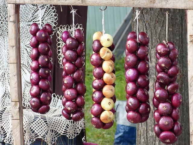 hanging onion-538890_640.jpg