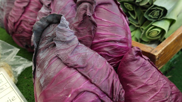 Antioxidants - Red cabbage is loaded with the flavonoid anthocyanin that provides the beautiful red color.Anthocyanins are antioxidants that lower the risk for many types of cancer, cardiovascular disease and inflammation throughout the body.