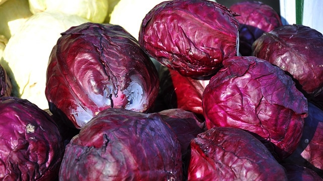 Remember - Some studies have shown that cruciferous vegetables, such as cabbage, can be beneficial for the memory.