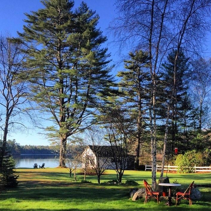 Blenheim Park Scene 9.jpg