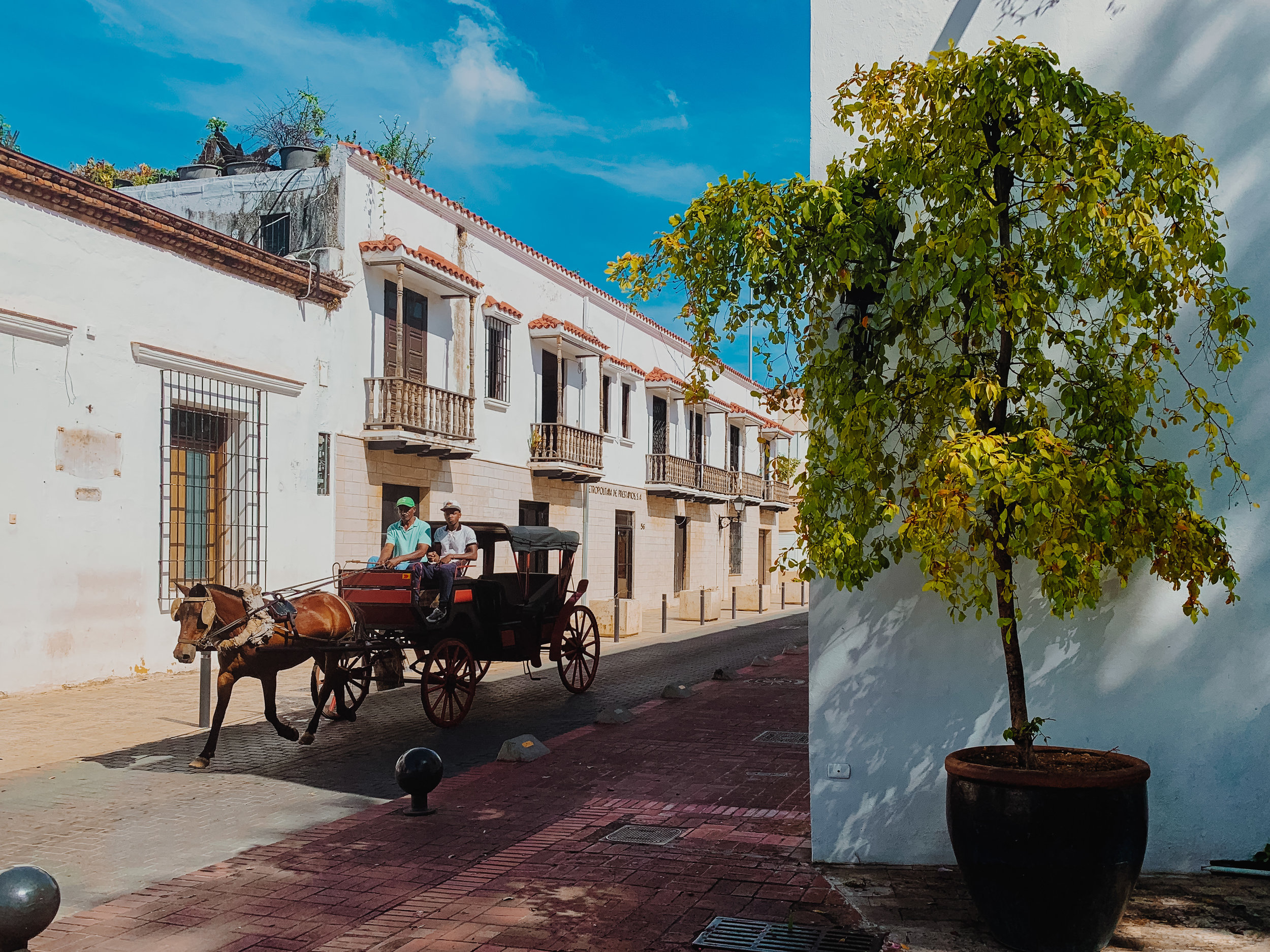 Two young men ride a red horse carriage down the empty streets of Zona Colonial, Santo Domingo