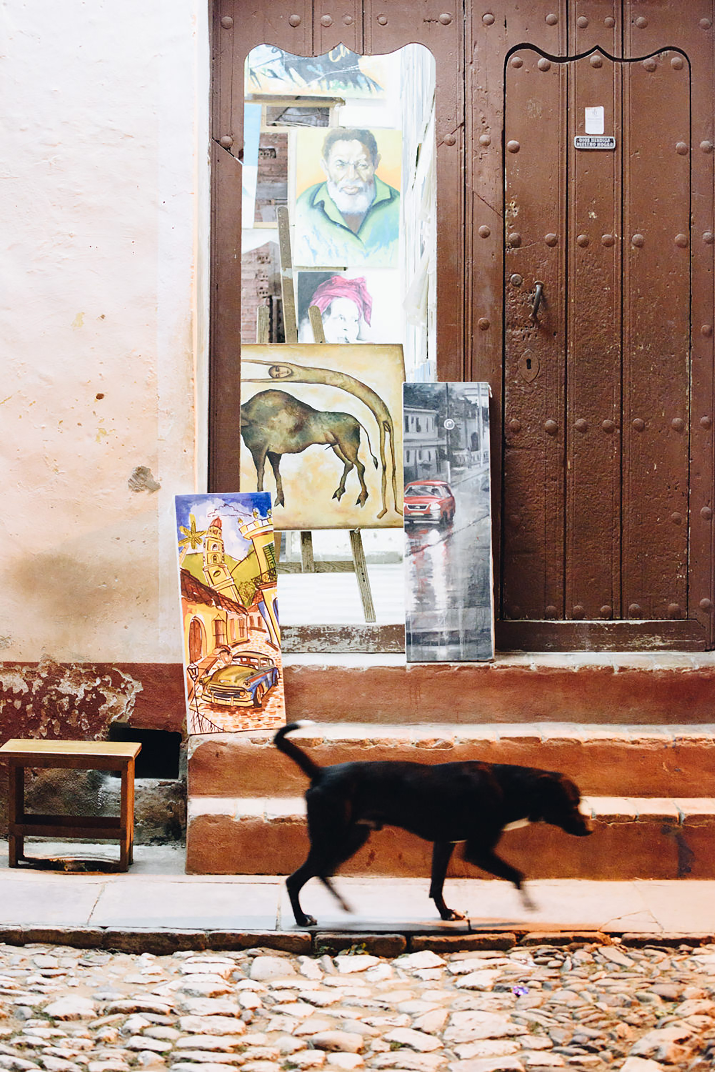 Dog passes by art work on sidewalk at night in Cuba