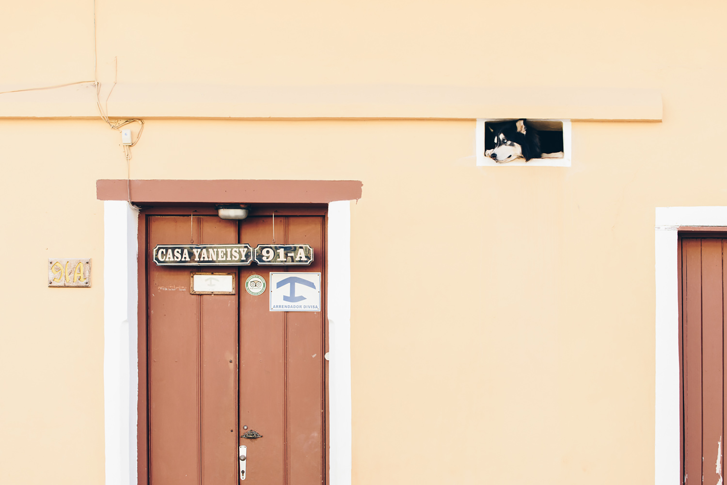 Dog looks out window of casa particular in Trinidad, Cuba