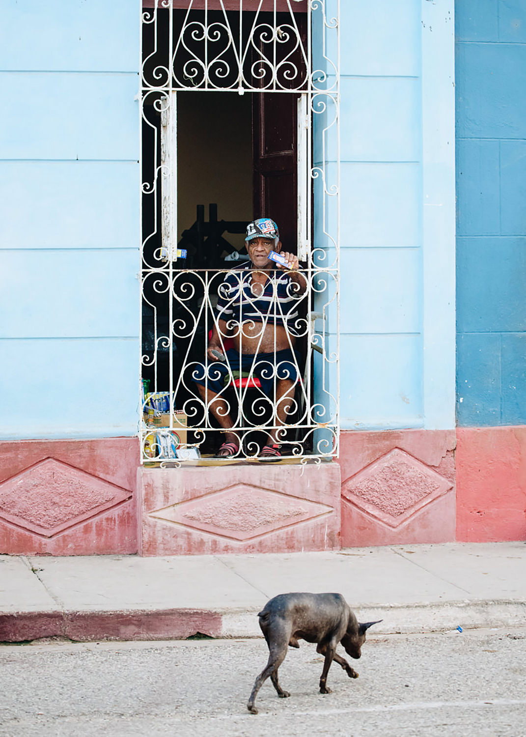 Dog sniffing for food on street in Cuba