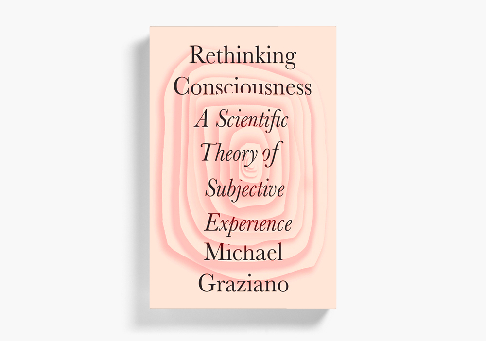 Rethinking Consciousness (KILLED