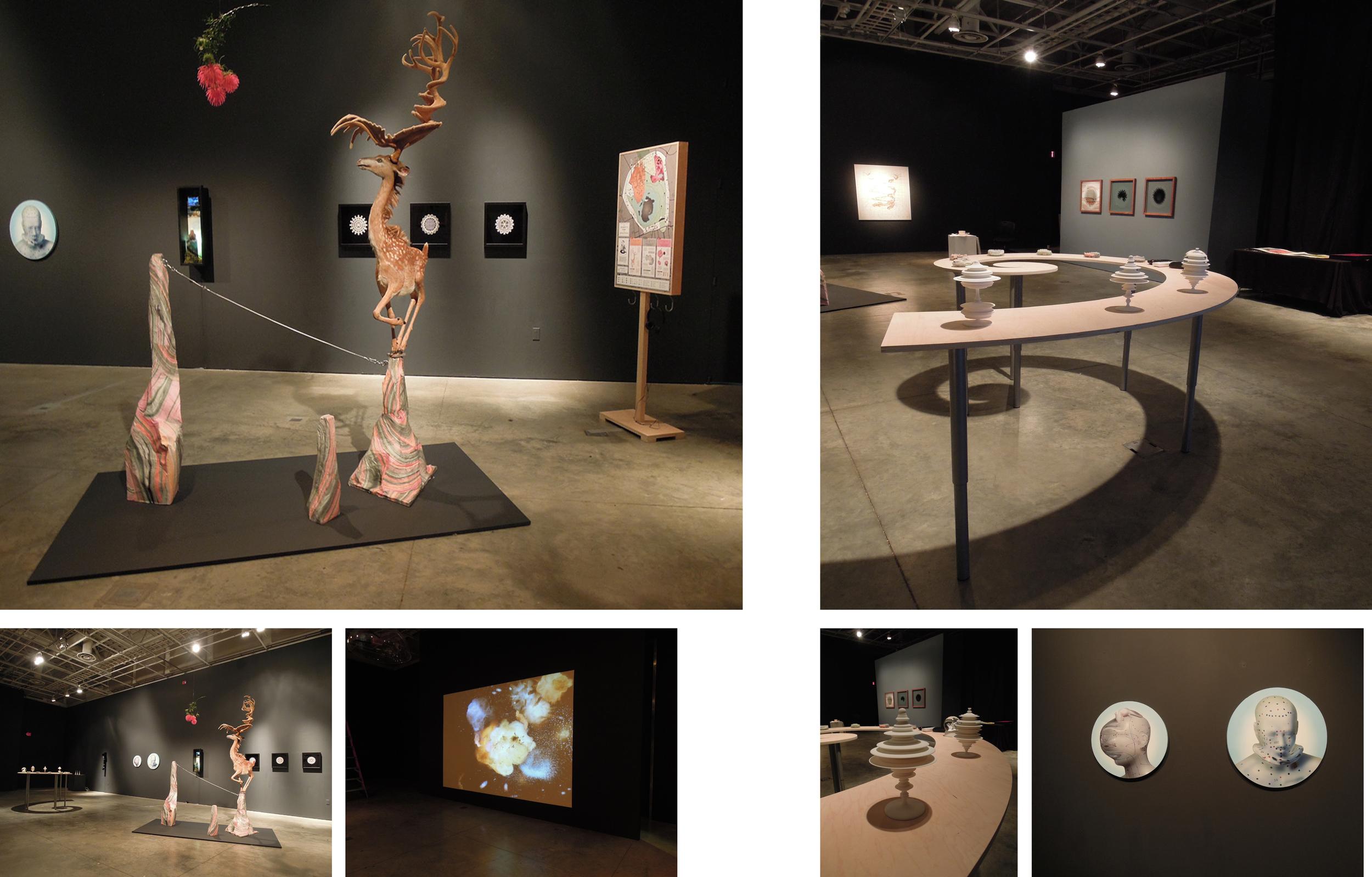 Objects of Wonder installation