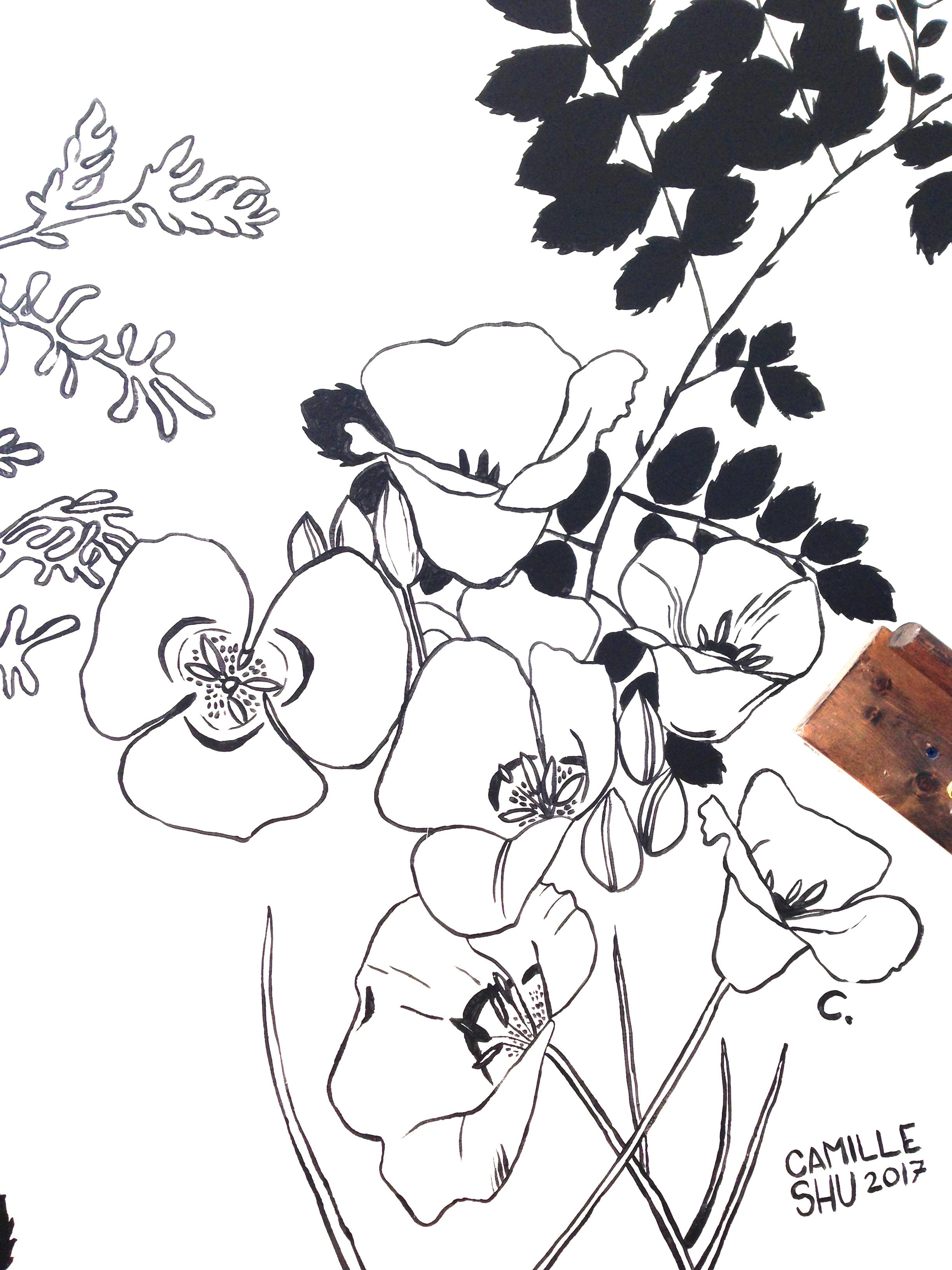 jennings detail mariposa.jpg