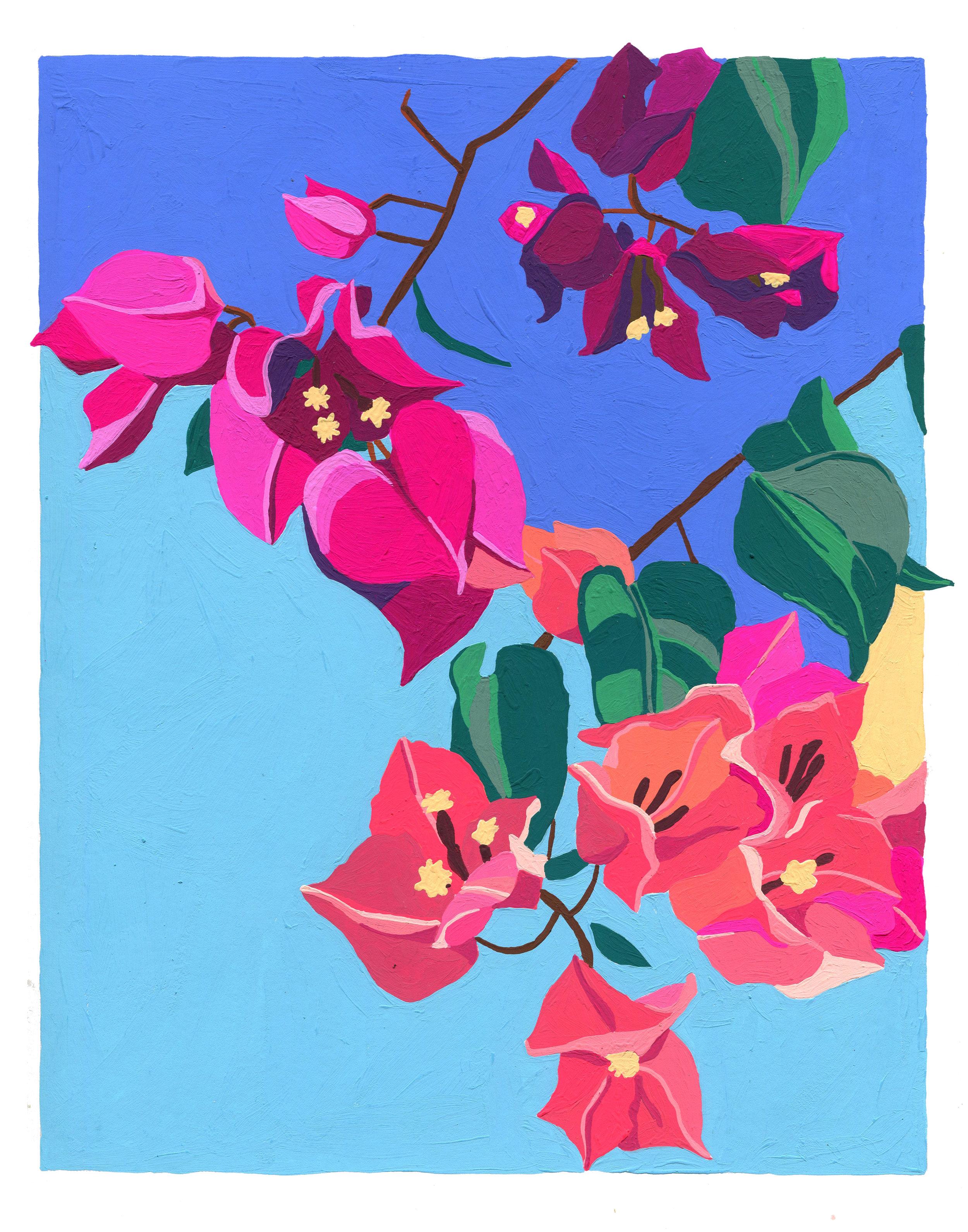 boug print 11x14.jpg