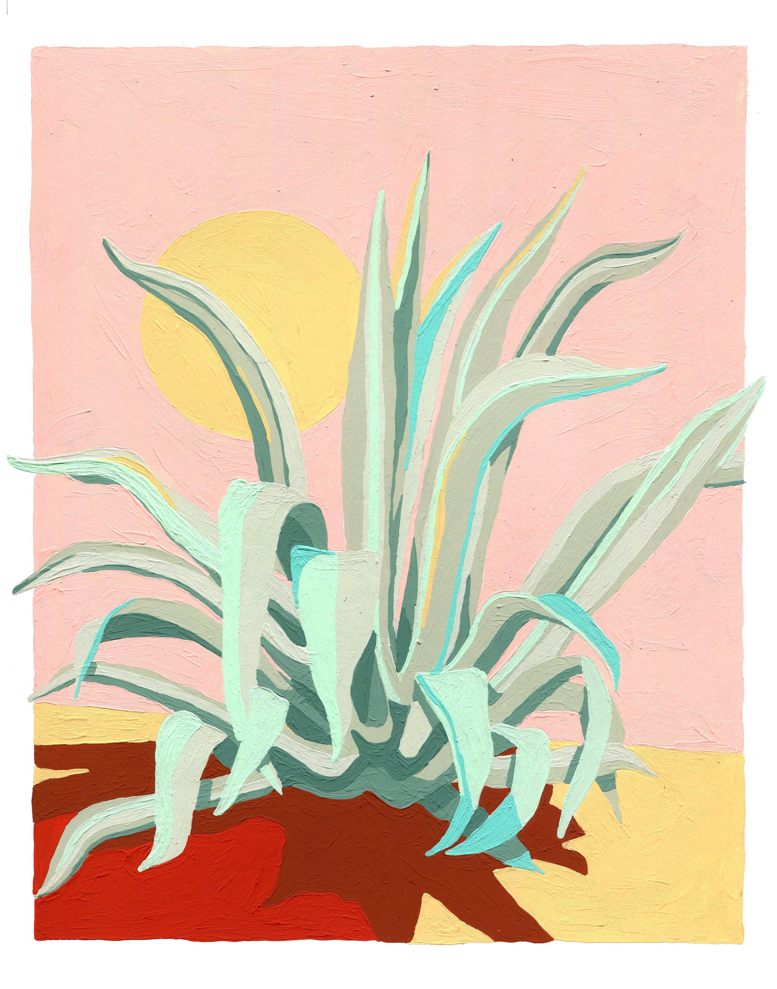 agave print 11x14.jpg