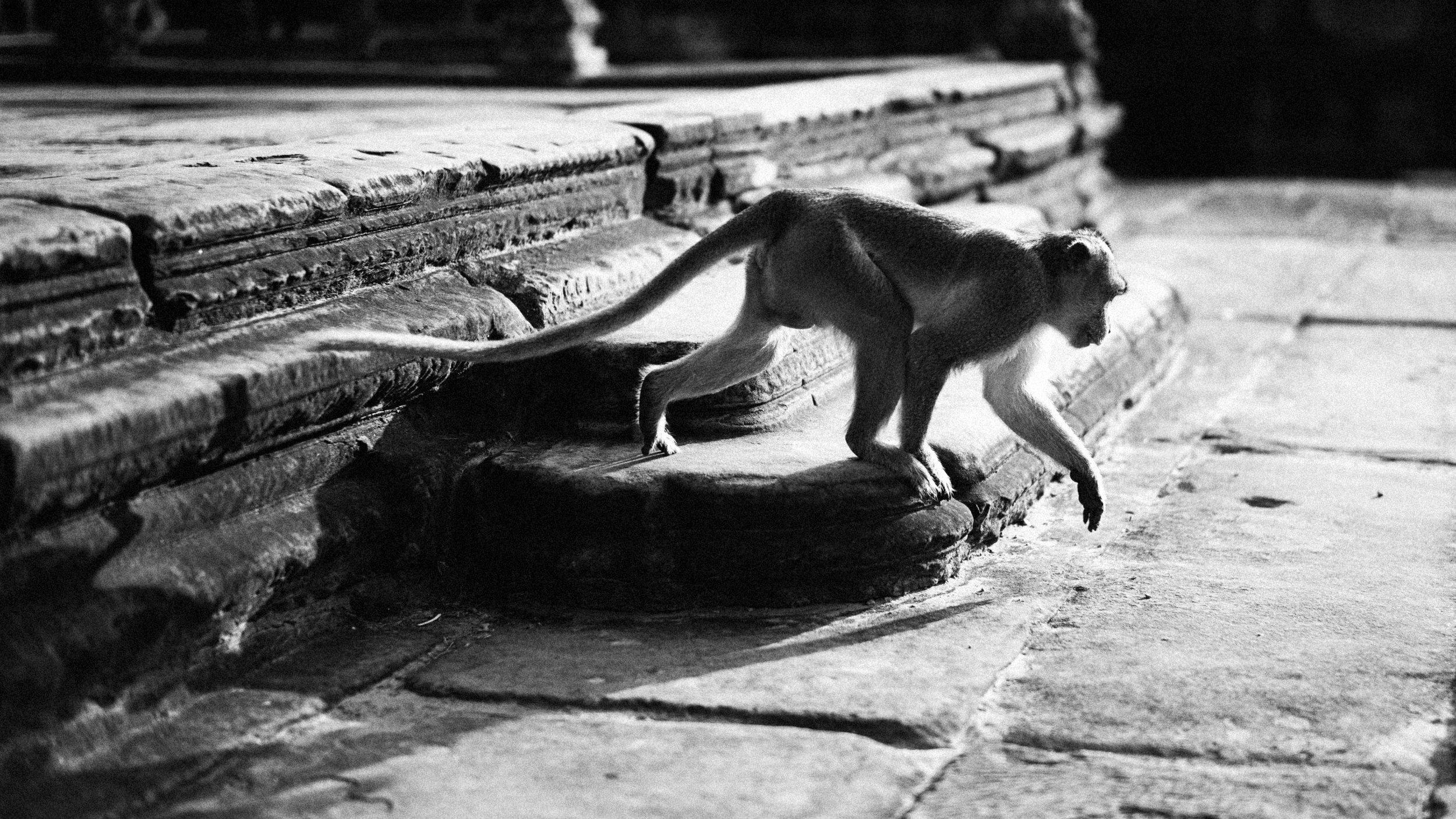 Ankor Wat 2017-147-Edit.jpg