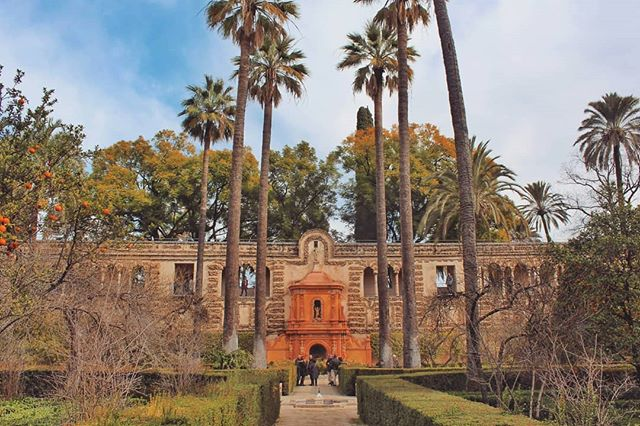 Ahead of the football game tomorrow night with @apoelfcofficial and @sevillafc and for those travelling to Seville from Cyprus, head to the link in my bio for all the tips around the city 🇪🇸 This blog post also celebrates solo travelling 💃💪 📍Real Alcazar . . #solo #solotravel #seville #sevilla #visitseville #visitspain #topspainphoto #ok_spain #ok_españa #livelovespain #spaininlove #spain_gallery #spainstagram #ig_andalucia_ #spaintoday #unlimitedspain #andalucia #globelletravel #globetrotting #worldofwanderlust #travelspain #spainvacation #traveldreamseeker #travelphotography #dametravelers #apoel #sevillafc #traveladdiction #travelingshoot #travelpicsdaily