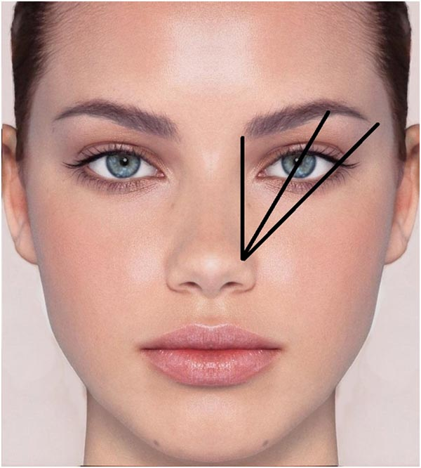 image via https://toolboxstudiosalon.com/should-i-have-a-professional-opinion-of-my-brows-answer-yes/