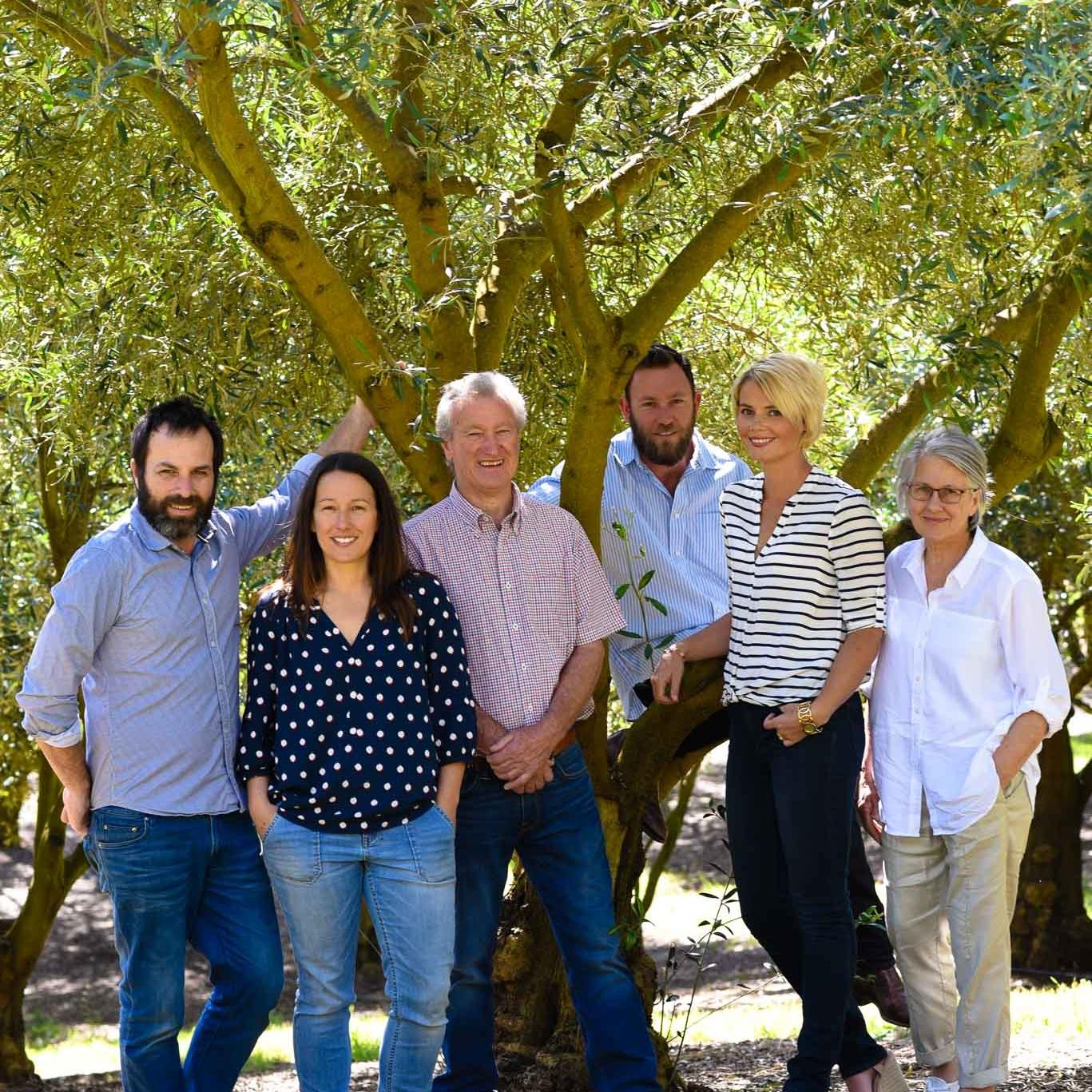 2017 - Meet the team: Steve, Sarah, Andy, Hal, Cass, Jude