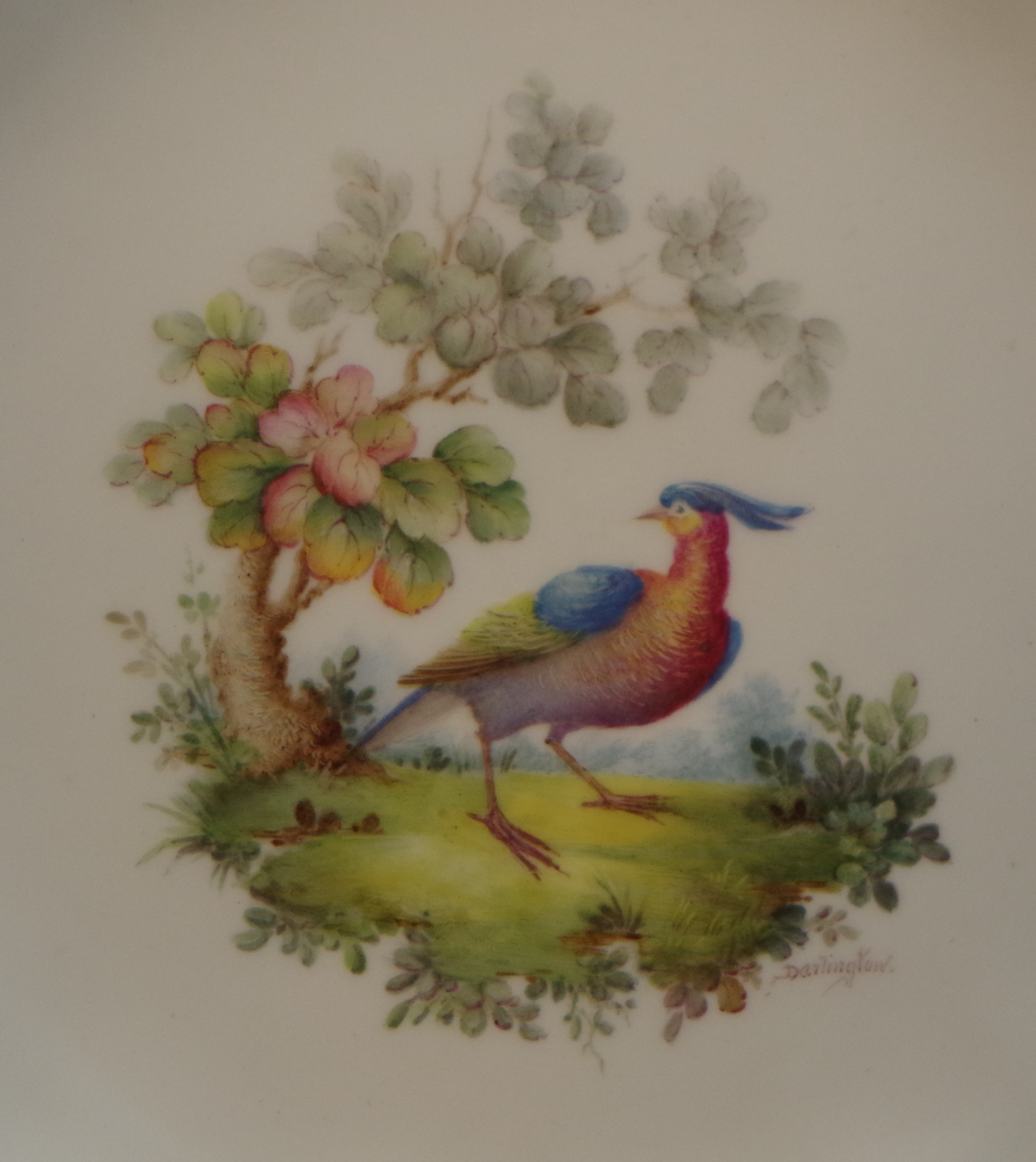 royal-crown-derby-clarence-shape-green-ground-to-rim-bird-centre-close-up-darlington-1921
