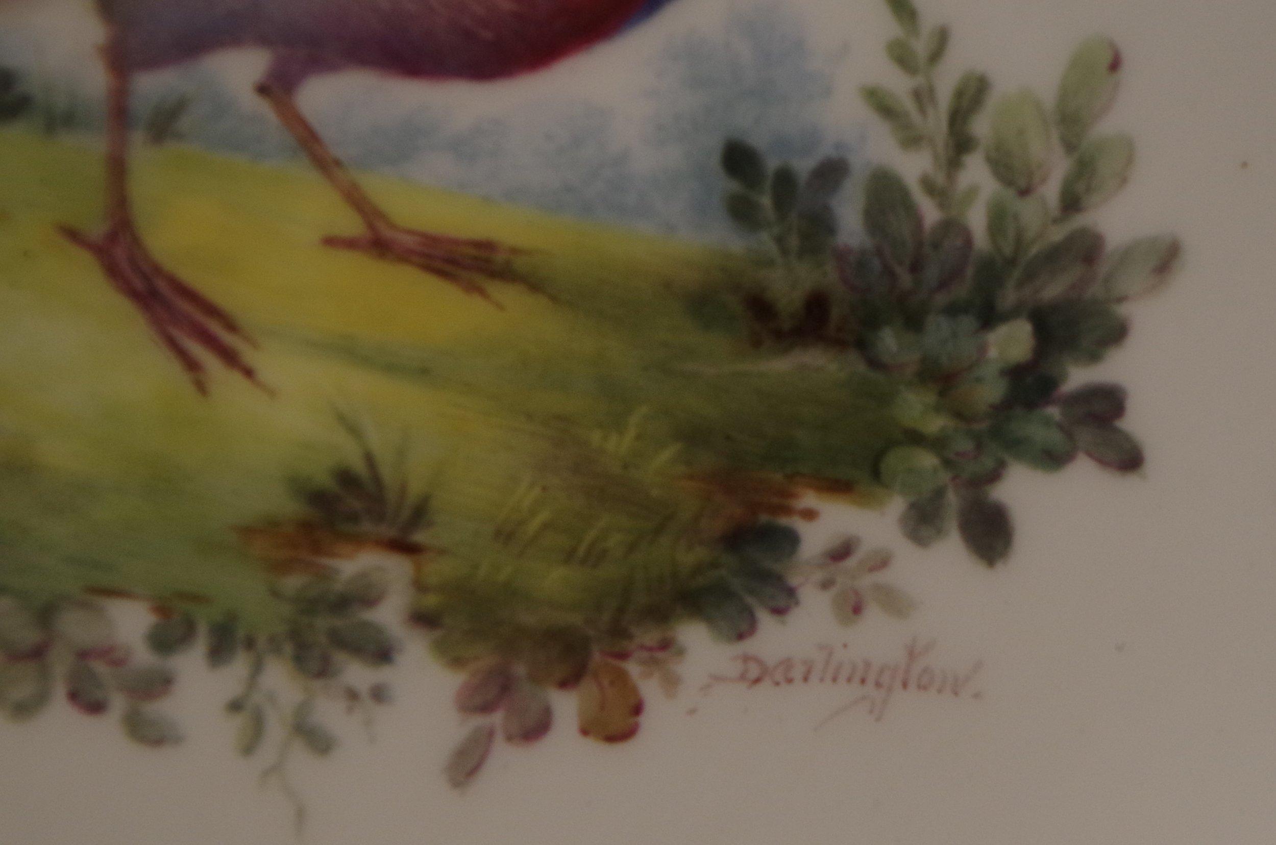 royal-crown-derby-clarence-shape-green-ground-to-rim-bird-centre-close-up-darlington-signature-1921
