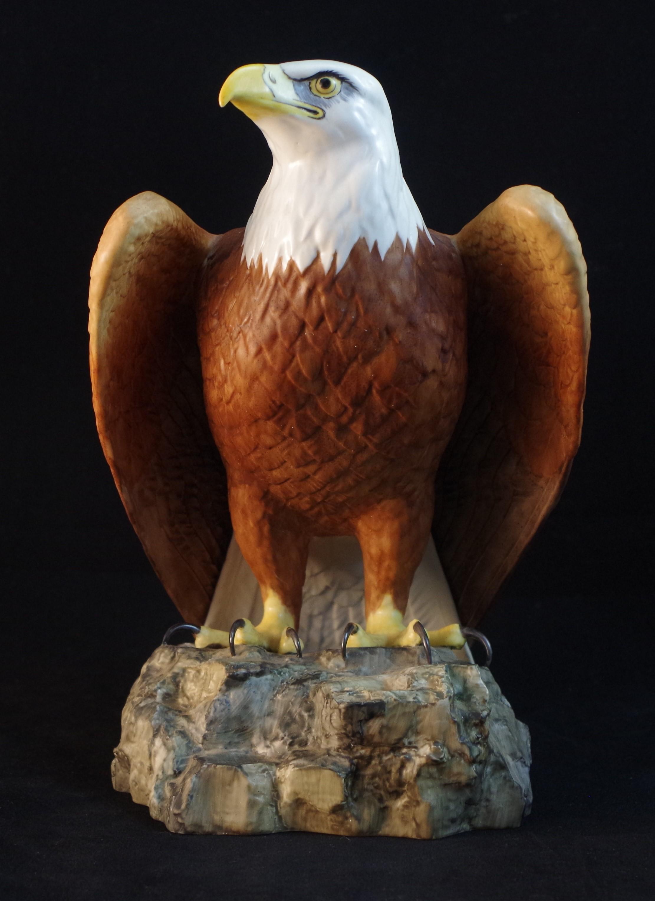 Bald Eagle F516