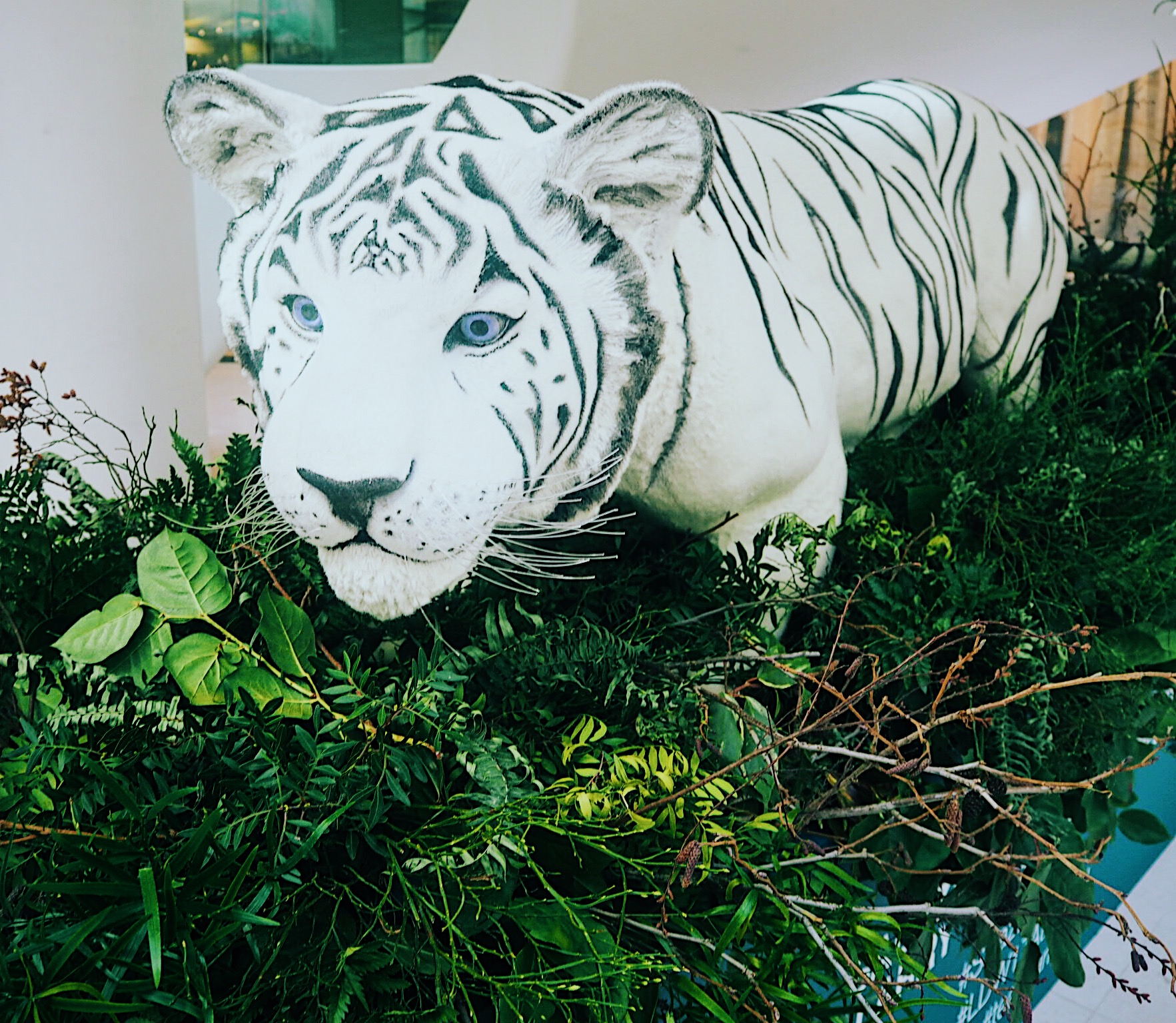 'Salazar The Siberian Tiger', by  Larry Walshe Floral Design