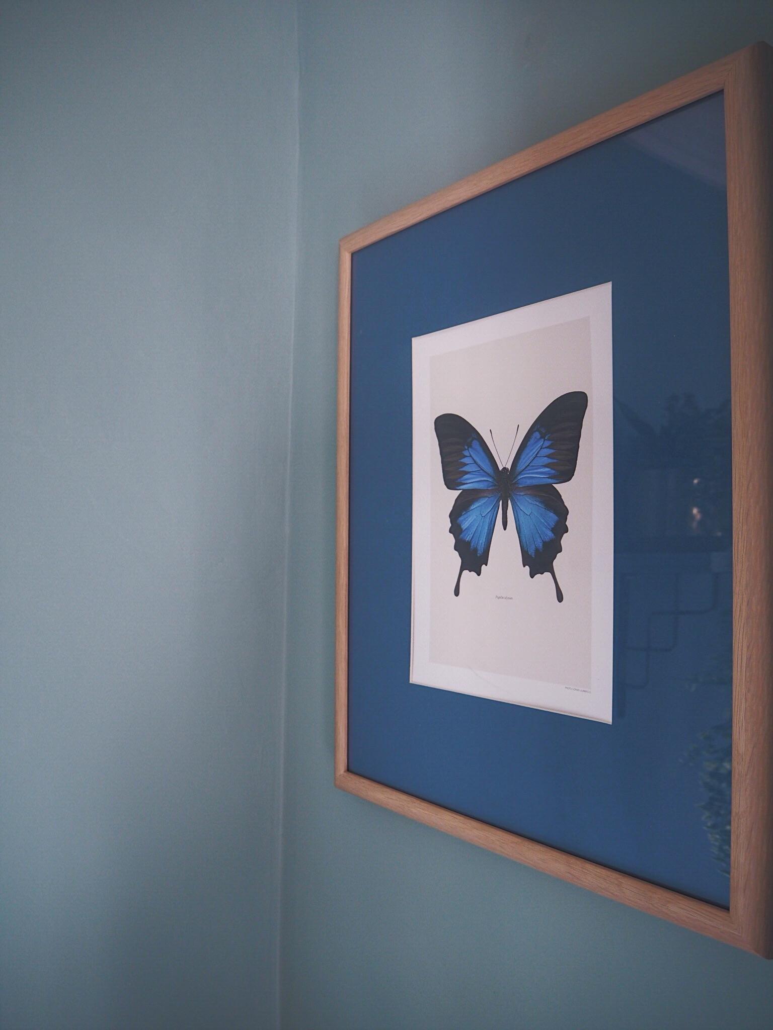 liljebergs print