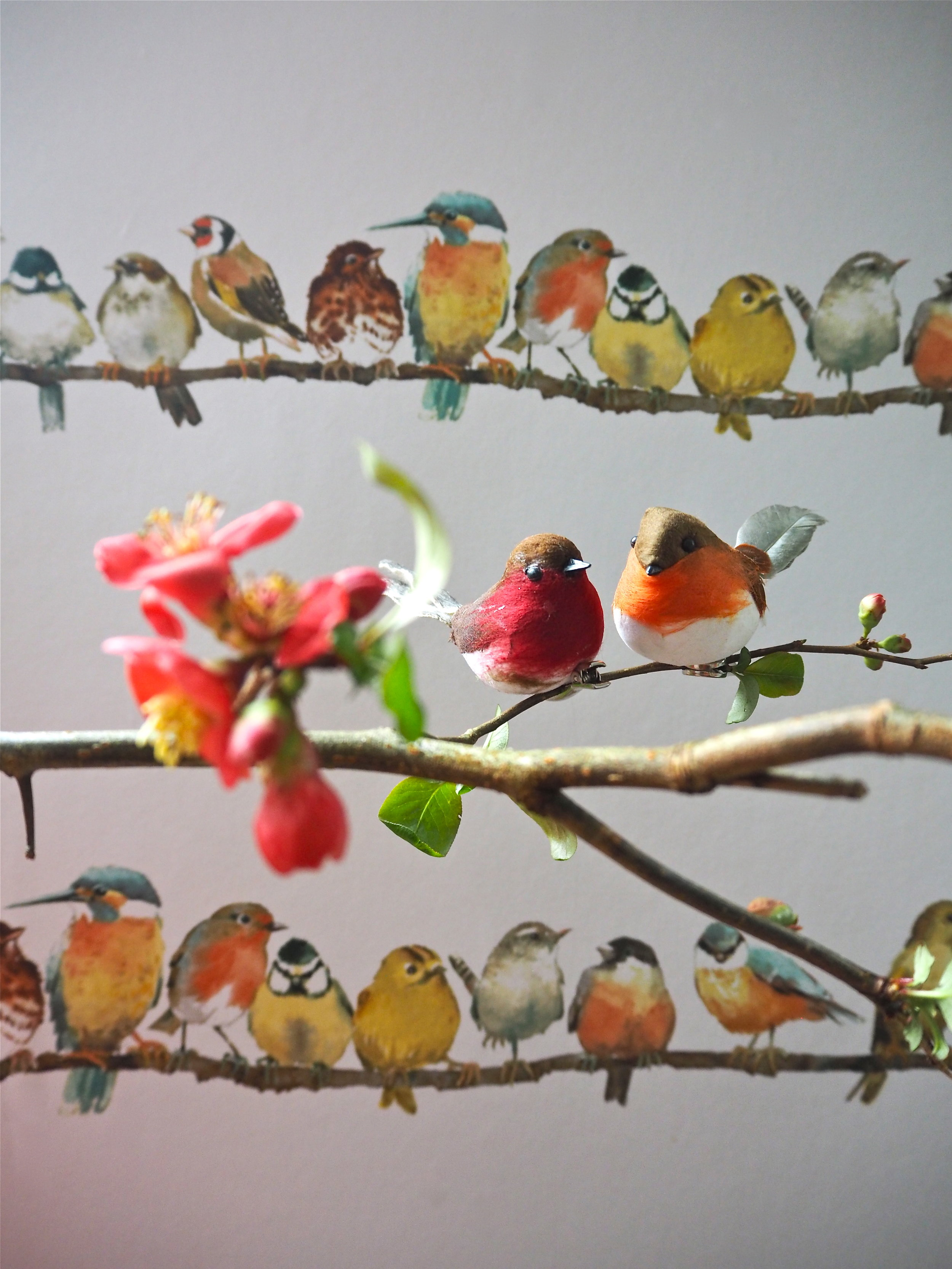 laurah ashley garden birds wallpaper.jpg