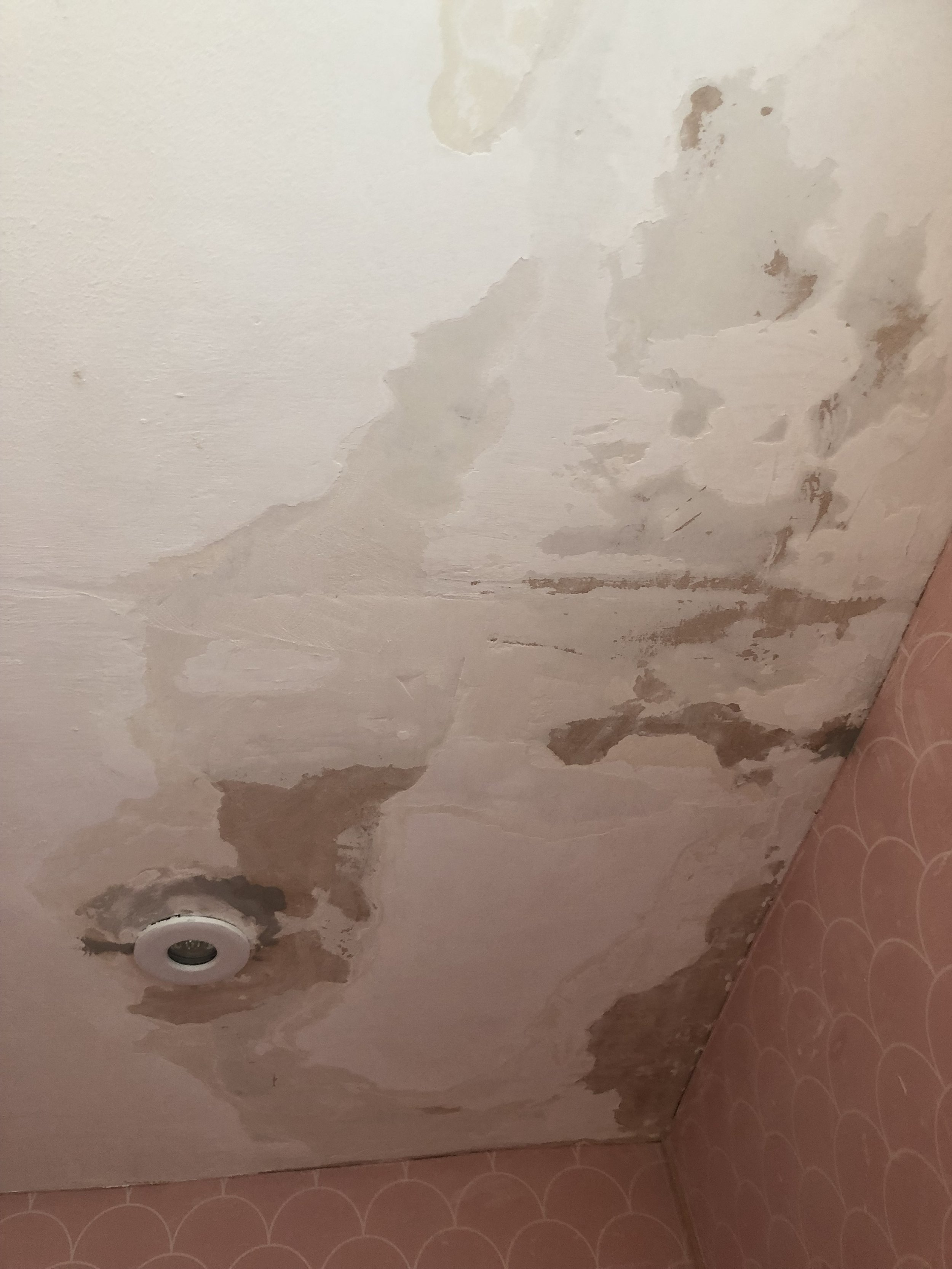 how to fix a flaky peeling bathroom ceiling