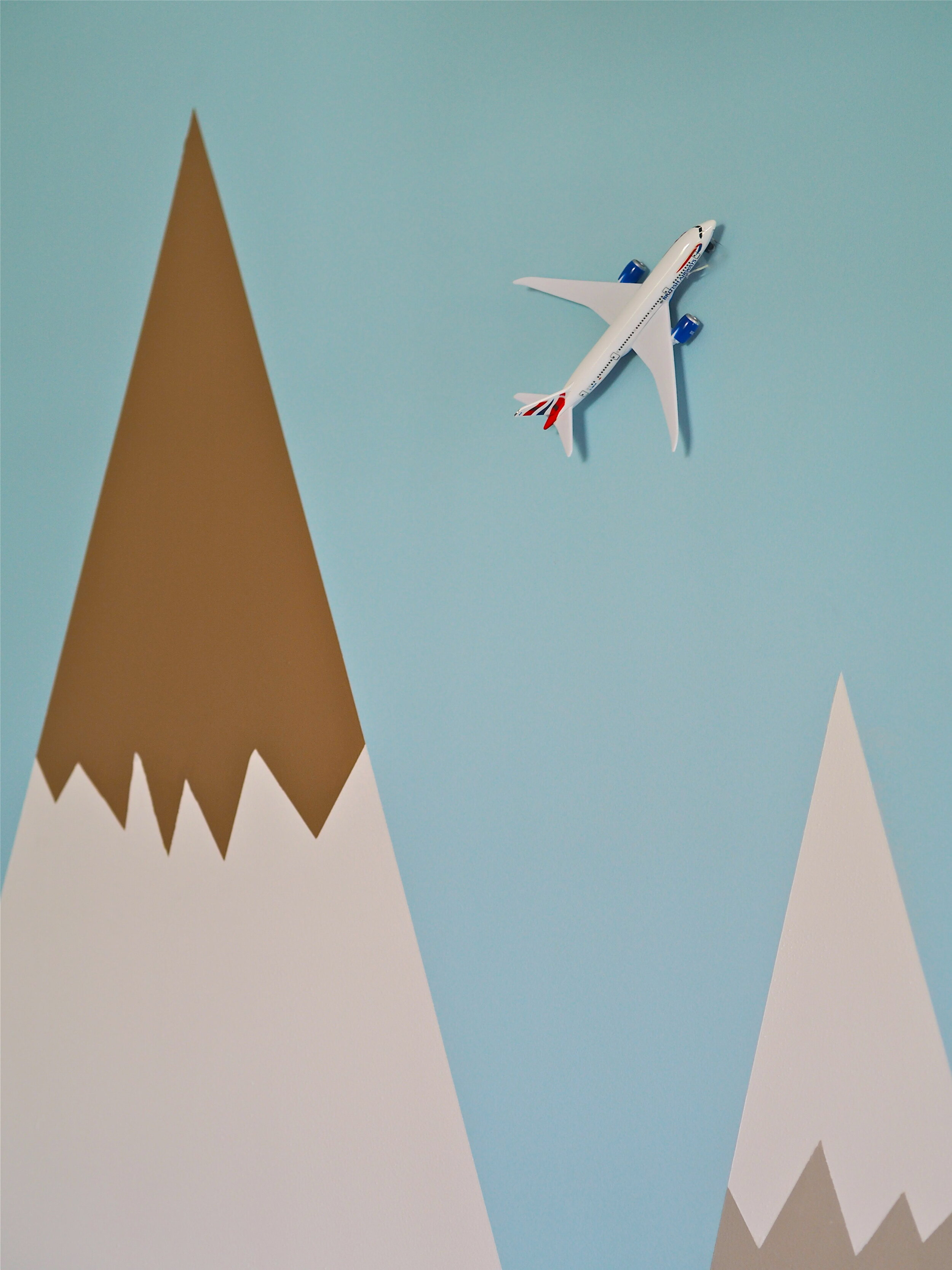 areoplane wall mural